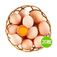 边走边淘鄂西散养土鸡蛋 20枚