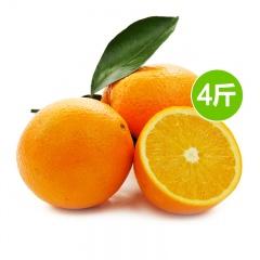 边走边淘湖北秭归九月红布丁橙 12-15个 4斤