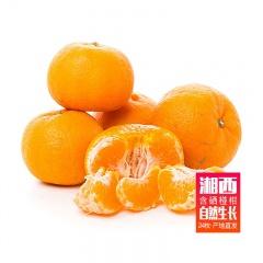 吉首富硒椪柑约24枚 新鲜水果