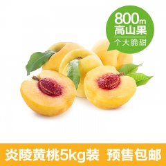 中国原产高山锦绣炎陵黄桃超值组10斤(5kg)---预计2017年8月1日成熟下树发货