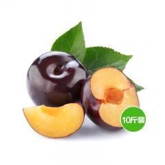 果园直供新鲜水果黑布林 10斤装