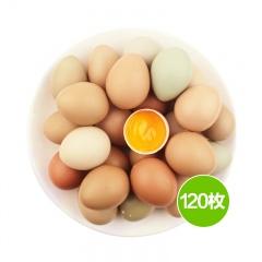 苗山香咕五彩土鸡蛋   2.5kg  120枚
