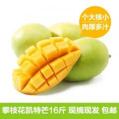 四川攀枝花凯特芒果16斤 现摘现发--预计2017年7月26日左右发货