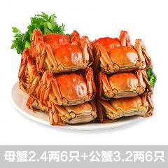 蟹将军阳澄湖大闸蟹 6公(3.2两)6母(2.4两)抢购组
