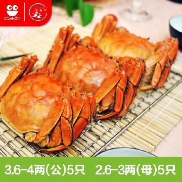 中国原产蟹将军阳澄湖大闸蟹1599贵宾礼券(公蟹3.6-4两5只+母蟹2.6-3两5只)