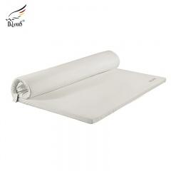 Delandis玺堡健康乳胶床垫1个 乳胶枕2个